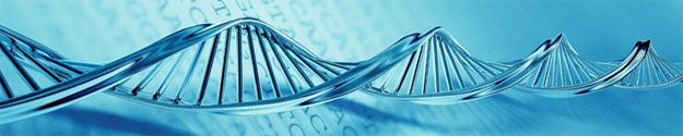 Genetics Questions and Answers about PGD and IVF